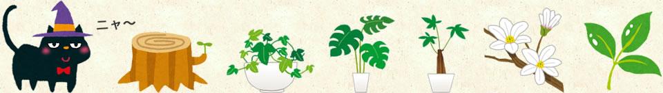 猫や、植木鉢、切り株、花や、葉っぱの画像
